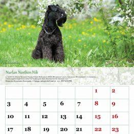 Печать календарей 2018
